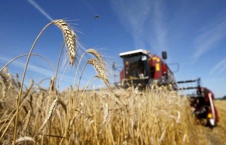 Выделять сельхозземли снова начнут без тендера