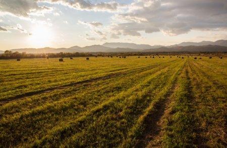 Приватизировать «дальневосточные гектары» предлагается досрочно