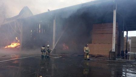 В каком регионе России пожар тушили около суток