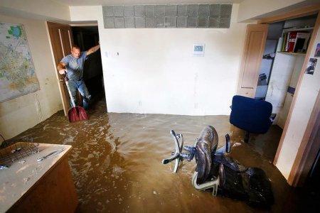 Сколько УК заплатит за затопленную пометом квартиру