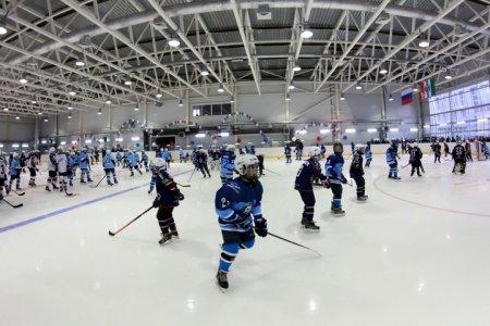 Сколько заплатят за проект ледовой арены в Новосибирске