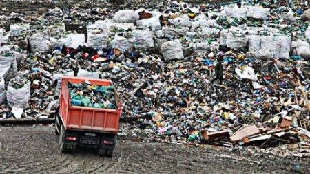 Когда в Ярославле пройдет митинг против ввоза мусора из Москвы