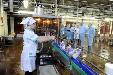 В ТиНАО возведут серию крупных заводов