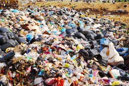 За какие действия с мусором будут штрафовать жителей Рузы