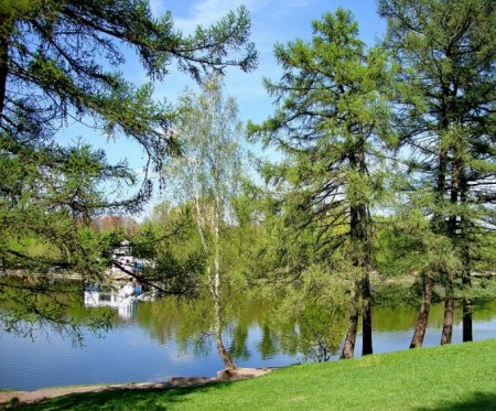 Сколько заплатят за благоустройство парка-усадьбы Люблино