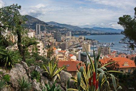 Назван самый дорогостоящий рынок жилья в мире