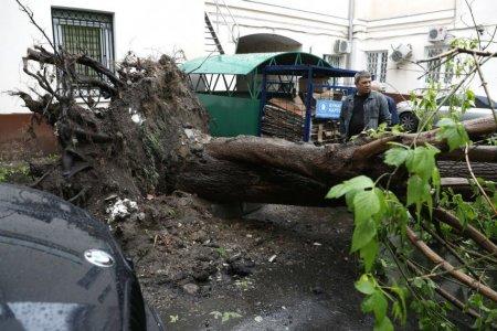 Объявлены страшные последствия урагана в ЦФО РФ и Поволжье