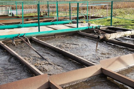 В России изменят систему нормирования очистки сточных вод