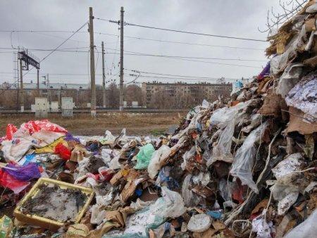 Сроки хранения мусора в столице могут увеличить