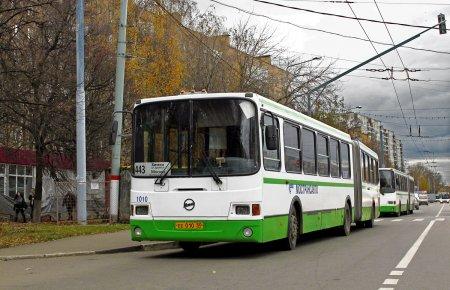 16 новых автобусных маршрутов до СНТ запущено в Подмосковье