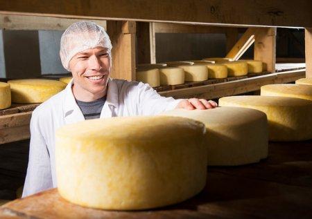 В Серпуховском районе появится крупный сырный завод