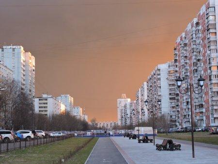 Колхозный рынок с панорамным остеклением откроют в районе Выхино-Жулебино