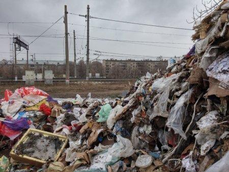 Эксперты подсчитали, сколько места в России занимают мусорные полигоны