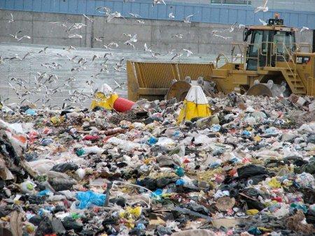 Названа сумма утилизации отходов Москвы