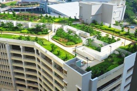 Общежитие с озеленением на крыше появится на юго-западе Москвы