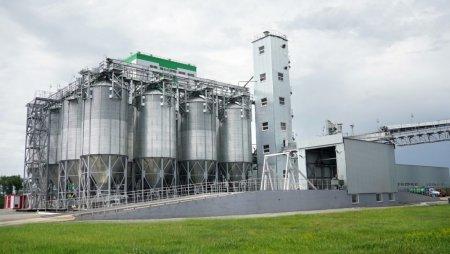 В подмосковных Озерах откроется комплекс по переработке зерна за 9 млрд рублей