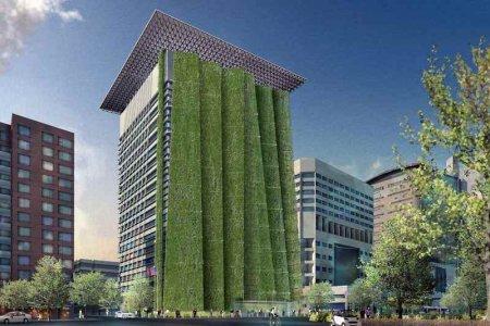 В Москве простимулируют «зеленое» строительство