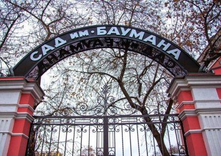 Самую большую площадку для игры в «Звездные войны» откроют в саду имени Баумана