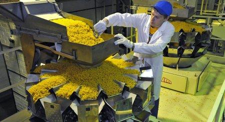 В Подмосковье откроется итальянский макаронный завод за 150 млн евро